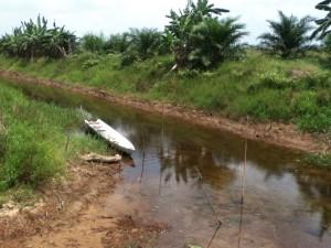 Irigasi di Kabupaten Paser Utara Belum Mendapat Perhatian (Gusti - Hello Borneo)