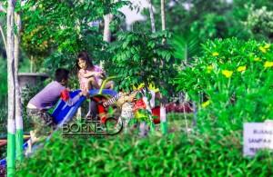 Anak-anak saat bermain di Taman Roseline Kabupaten Penajam Paser Utara (Suheeman - Hello Borneo)