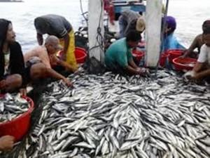 Dengan Rumpon Cerdas hasil tangkapan ikan bisa meningkat (Subur - Humas Setkab PPU)