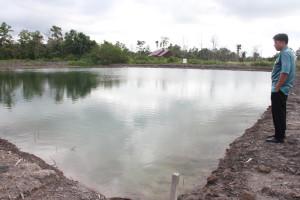 Salah satu kolam pembenihan ikan yang ada di Balai Pemebnihan ikan Air Tawar di Kelurahan Nenang, Kecamatan Penajam, Kabupaten Penajam Paser Utara (Iskandar - Humas Setkab Penajam Paser Utara)
