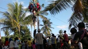 Panjat pinang meriahkan Hari Kemerdekaan RI ke-70 (Bagus Purwa - Hello Borneo)
