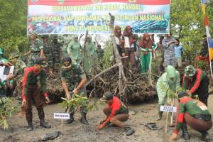 TANAM MANGROVE. Anggota TNI Kodim 0904 Tanah Grogot ikut peduli melestarikan lingkungan. (Rapal JKN - Hello Borneo)