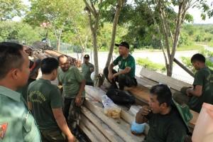 Petugas kehutana Dishutbun Kabupaten Penajam Paser Utara usai melakukan sortir terhadap kayu ilegal temuan yang akan dilelang (Suherman - Hello Borneo)