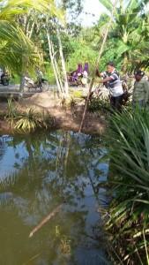 Salah satu kolam lokasi tewasnya tiga bocah di Kecamatan Babulu, Kabupaten Penajam Paser Utara (AH Ari B - Hello Borneo)