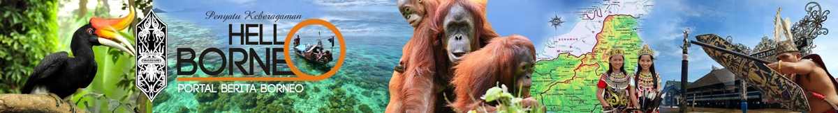 Portal Berita Borneo