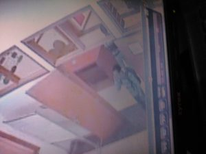 Foto Video CCTV diduga pelaku. (Ist)