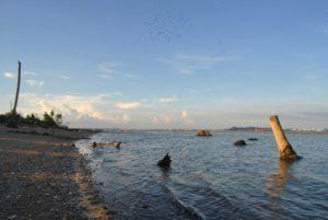 Salah satu kawasan pesisir pantai di Kabupaten Penajam Paser Utara (Bagus Purwa - Hello Borneo)