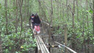 Kondisi jembatan bambu yang dibangun KUW Bina Bersama Kelurahan Kampung Baru. (MR Saputra - Hello Borneo)