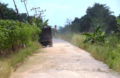 Kondisi Jalan Menuju Desa Sri Raharja Rusak.