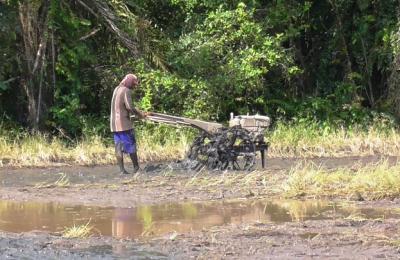 Petani Desa Sri Raharja