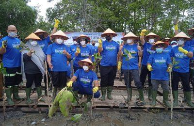 Rayakan hari jadi yang ke-21, PT. Kideco Jaya Agung member dari Indika Energy Group menanam ribuan bibit mangrove. (Ist)